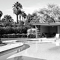Sinatra Pool And Cabana Bw Palm Springs by William Dey