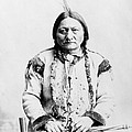 Sitting Bull by War Is Hell Store