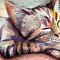 Sleeping Kitten by Olga Shvartsur