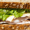 Smoked Turkey Sandwich by Edward Fielding