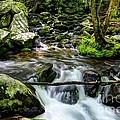 Smoky Mountain Stream 4 by Mel Steinhauer