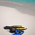 Snorkeling Gear. by Fernando Barozza