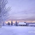 Snow Day by Kristal Kraft