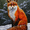Snow Fox by Crista Forest