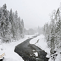 Snow Landscape - Trees And River In Winter by Matthias Hauser