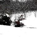 Snow Scene 6 by Patrick J Murphy