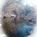 Snowdrops Print by Teresa Schomig