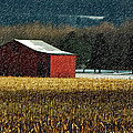 Snowy Red Barn In Winter by Lois Bryan