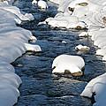 Snowy River view Print by Kiril Stanchev