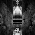 Soft Asylum by Bob Orsillo