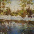 Southern Landscapes   by Nancy Stutes