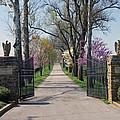 Spendthrift Farm Entrance by Roger Potts