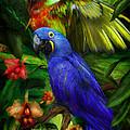 Spirit Of The Tropics by Carol Cavalaris