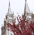 Spring At The Temple by Chad Dutson
