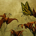 Spring Fever by Diane Schuster