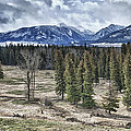 Spring In The Wallowas by Adele Buttolph