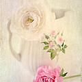 Spring Romance by Darren Fisher
