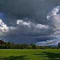 Spring Showers by JM Photography    Jim Mullholand