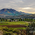 Spring Time In The Valley by Robert Bales