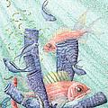 Squirrel Fish Reef