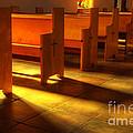 St Francis De Paula Shadow And Light by Bob Christopher