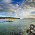 St Mawes Ferry Duchess Of Cornwall by Chris Thaxter