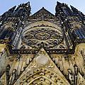St Vitus Church In Hradcany Prague by Jelena Jovanovic
