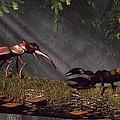 Stag Beetle Versus Scorpion Print by Daniel Eskridge