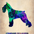 Standard Schnauzer Poster Print by Naxart Studio