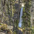 Stanley Falls At Beauty Creek by Brian Stamm
