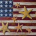 Starfish On American Flag by Garry Gay
