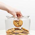 Stealing Cookies From The Cookie Jar by Elena Elisseeva