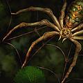Steampunk - Spider - Arachnia Automata Print by Mike Savad