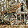 Still Standing by Terry Rowe