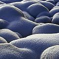Stone Cold by Michael Van Beber