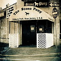 Stone Pony by Colleen Kammerer