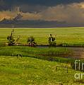 Storm Crossing Prairie 1 by Robert Frederick
