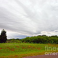 Stormy Cloud by Mickey Harkins