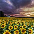 Stormy Sunrise by Debra and Dave Vanderlaan