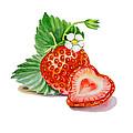 Strawberry Heart by Irina Sztukowski