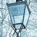 Street Lamp by Tom Gowanlock
