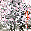 Sumie No.3 Cherry Blossoms by Sumiyo Toribe