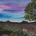 Summer Meadow by Anastasiya Malakhova