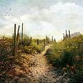 Summer Pathway by John Rivera