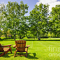 Summer Relaxing by Elena Elisseeva