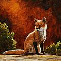 Sun Fox by Crista Forest