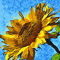Sunflower Abstract by Unknown