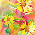 Sunflower by Kelly Perez