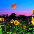 Sunflower Patch And Moon  by Randall Branham