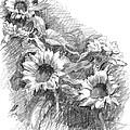 Sunflowers by Sarah Parks